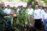 Toyota Indonesia Tourism Park Actualize The Ecosystem Diversity