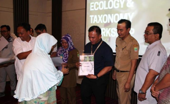 TMMIN 'Bamboo Ecology & Taxonomy' Workshop